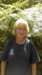 Photo of Sue, a team member